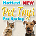 Hottest New Cat Toys for Spring 2013