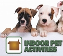 Indoor Activities for You and Your Pet