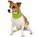 Insect Shield Neck Gaiter Large - Green