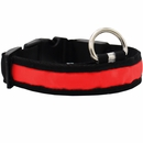 LED Safety Electric Glow Collar - Red (Medium)