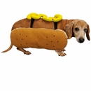 Otis and Claude Fetching Fashion Hot Diggity Dog Costume Mustard - SMALL