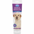 PetAg Vitamin & Mineral Gel for Dogs (5 oz)