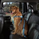 Petedge Harness / Leashes & Car Seat Cover