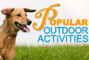 Popular Outdoor Pet Activities