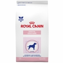 ROYAL CANIN Canine Dental Dry (17.6 lb)