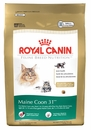 Royal Canin Dry Cat Food