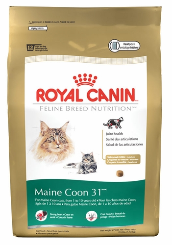royal canin feline breed nutrition maine coon 6 lb. Black Bedroom Furniture Sets. Home Design Ideas