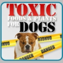 Toxic Foods and Plants for Dogs