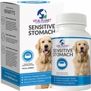 Vital Planet Sensitive Stomach (60 Chewable Tablets)