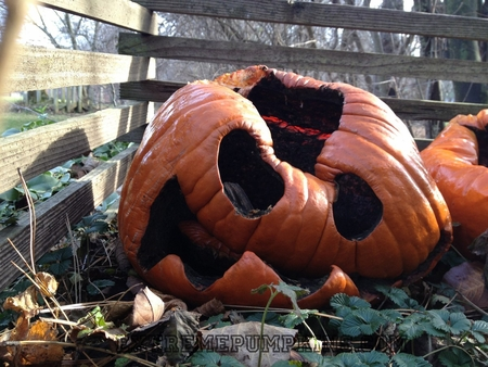 The Rotten Face Pumpkin