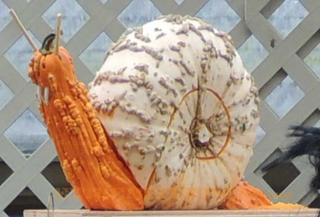 The Vampire Snail Pumpkin