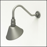 "10"" Angle Shade Gooseneck Lighting"
