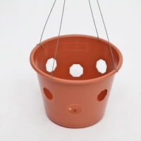 "10"" Bloom Master Hanging Basket"