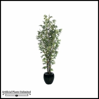 10' Japanese Bamboo Tree - Green|Indoor