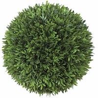 10in. Podocarpus Topiary Balls - Indoor