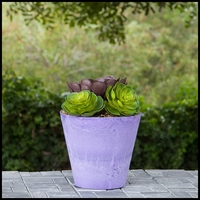 10in. Naples Planter - 2 Colors