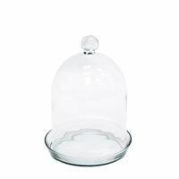 12in. Bell Jar Terrarium