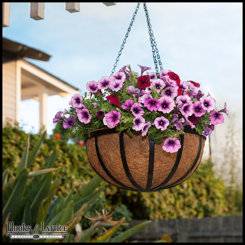 Wonderful ... Garden Flat Steel Hanging Basket Click To Enlarge
