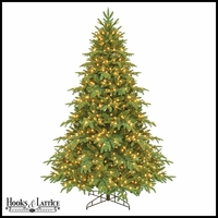 9.5 ft Asheville Pre-Lit Fir Artificial Christmas Tree w/ Clear Lights