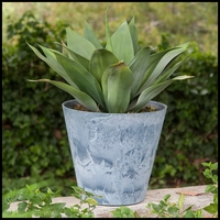 12in. Naples Planter - 4 Colors