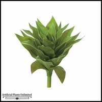 13in. Agave Plant - Green|Indoor