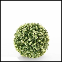 13in. Variegated Boxwood Topiary Ball - Outdoor