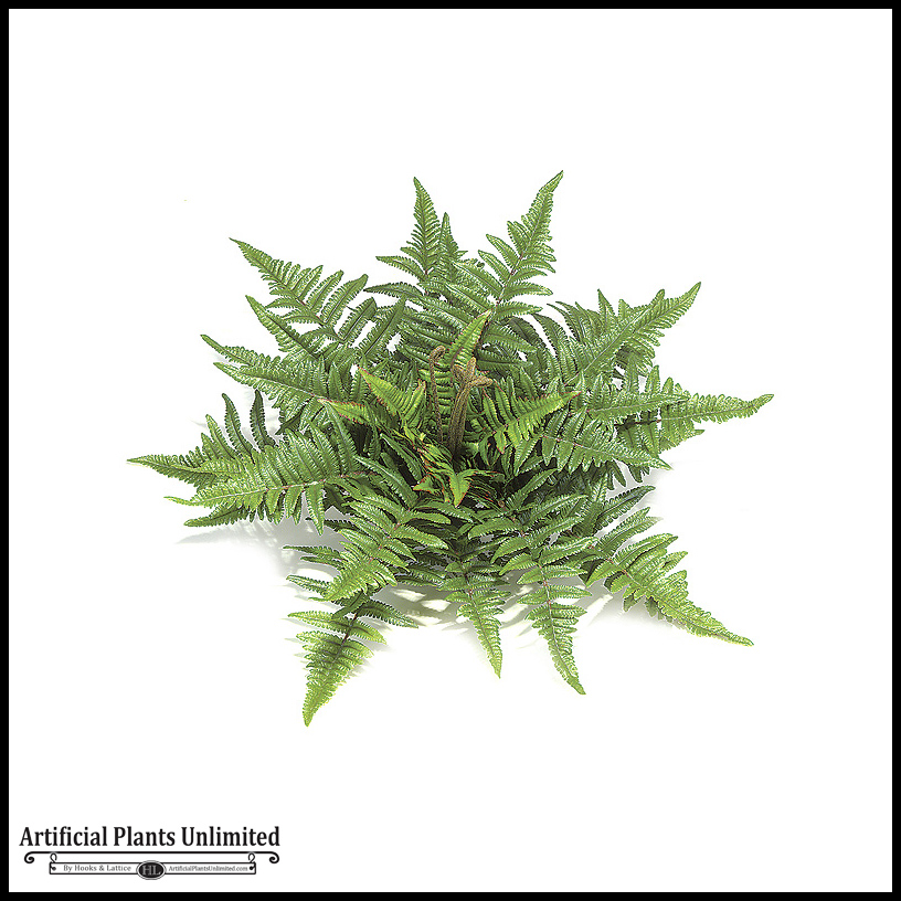 14in. tree fern - green|indoor