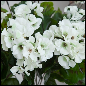 14in. Outdoor Artificial Geranium Bush - Cream