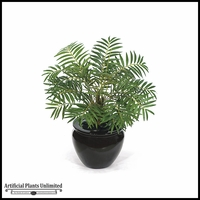 17in. Neanthe Bella Palm - Green|Indoor