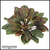 17in. Hosta Plant Green/Burgundy