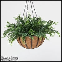 "18"" Buckler Fern Hanging Basket"