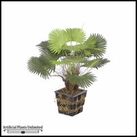 18in. Fan Palm - Wood Pot - Green|Indoor