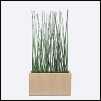 4'L Horsetail Grove in Modern Planter, Indoor