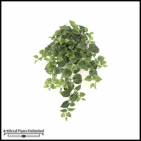 21in. Philodendron Bush - Green|Indoor - NFR