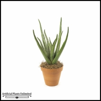 22in. Soft Touch Aloe Bush - Green|Indoor