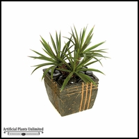 22in. Star Succulent and Aloe - Green/Red|Indoor