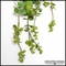 22in. Hanging Succulent, Green