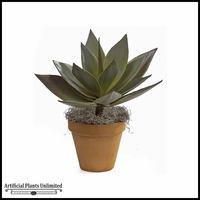23in. Nat Touch Agave Plant - Green|Indoor