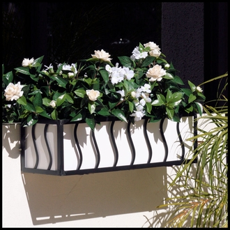 "24"" French Window Box Cage"