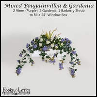 "24"" Window Box Recipe for Mixed Bougainvillea - Purple"