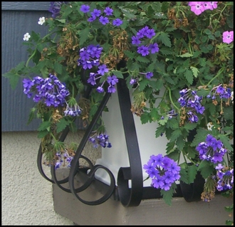 24in. European Window Box Cage