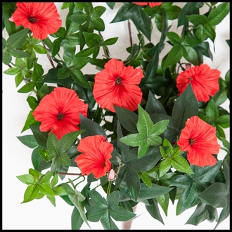 26in. Morning Glory Vine, Indoor Rated - Red