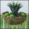 26in. Windsor Woodlands Moss Wall Basket