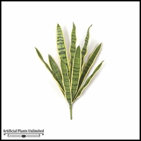 27.5in. Sansevieria Bush - Green/Yellow|Indoor