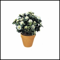 28in. Outdoor Artificial Gardenia- White