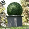 30in. Artificial Boxwood Topiary Ball in Tuscana Planter