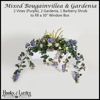 "30"" Window Box Recipe for Mixed Bougainvillea - Purple"