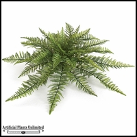 30in. Leatherleaf Fern - Outdoor