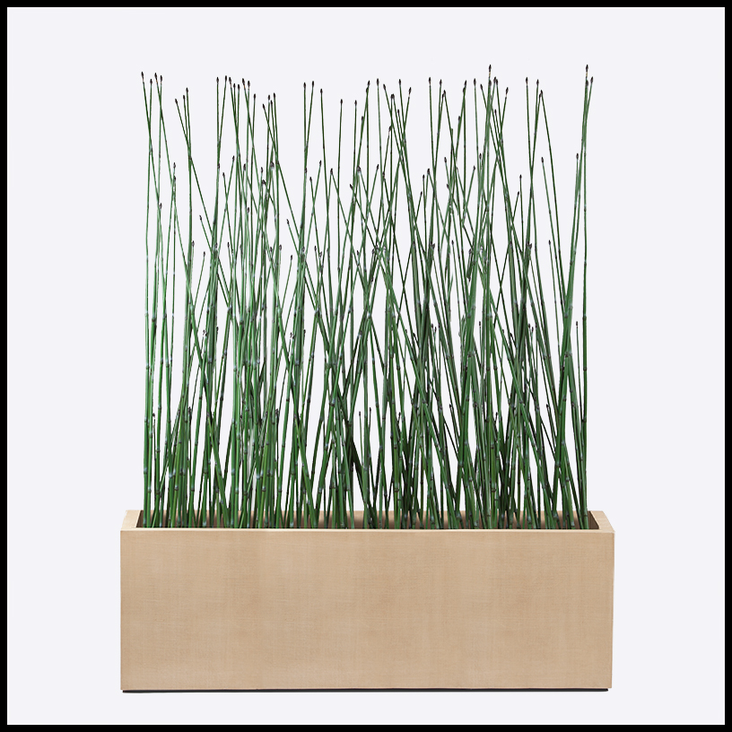 tall horsetail reed planters - artificial plants unlimited 6 Foot Fake Plants