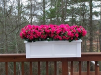 "36"" Hampton Rail Top Planter- 2X6 Rail"
